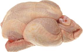 Poultry - Vårkyckling