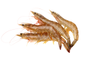 Prawns/shrimps