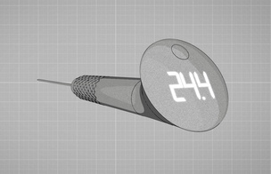 Ultimate thermometer!