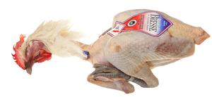 Poultry - Bresse chicken