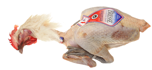 Poultry - Bresse chicken