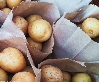 Store potatoes PS