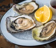 Oysters PS
