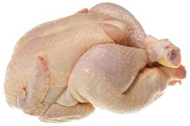 Poultry - Majskyckling