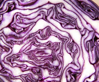 light recipe red cabbage