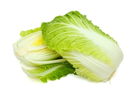 Cabbage - Chinese cabbage