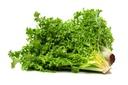Salad (fri)