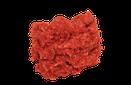 Wild boar mince