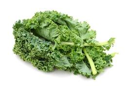 Cabbage - Kale