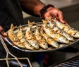Grilled sardines PS