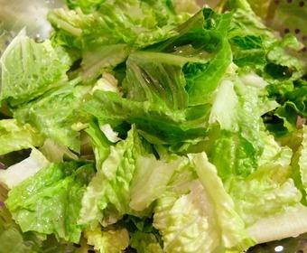 Lettuce PS